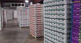 冷库运输应用案例:果蔬保鲜、冷藏运输