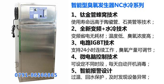 中型水冷英国威廉希尔公司发生器NC水冷系列_外置式英国威廉希尔公司发生器