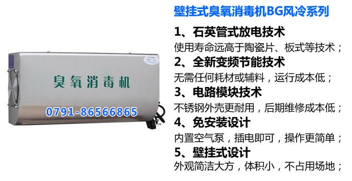 壁挂式英国威廉希尔公司消毒机BG系列_壁挂式英国威廉希尔公司发生器
